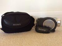 Sony DVD Handycam (Model DCR-DVD405) & Carrycase