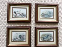 6 framed pictures of ducks 2 large and 4 small