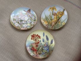 Decorative plates the festival of flower fairies