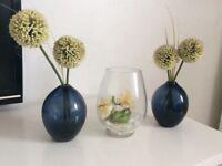 Indoor decorative plants, 3 for £5