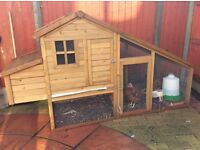 Chickens and Coop/run