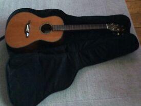 Guitar - SX Custom Guitar & Stagg carry case