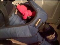 Hippo Bag and golf clubs, TI TITANIUM MATRIX EVOLUTION, EV OVERSIZE,