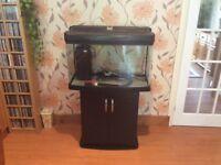 Fish Pod glass aquarium fish tank 120L with cabinet stand
