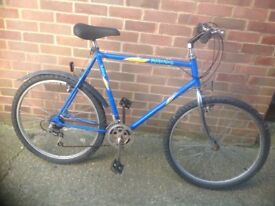 Retro Adults Raleigh Mountain Bike 18 speed