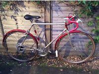 Raleigh Medalle Road Bike