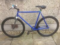 SINGLE SPEED BIKE FOR SALE-IMMACULATE CONDITION-FREE DELIVERY
