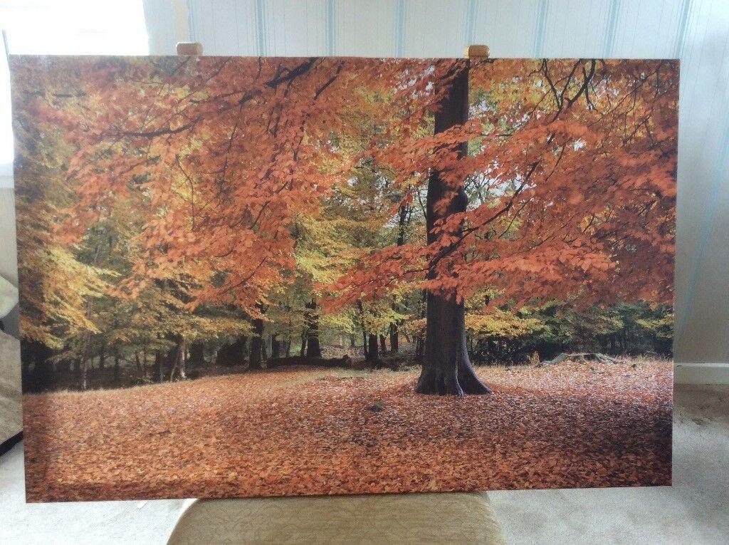 Autumn Wall Art | in Denbigh, Denbighshire | Gumtree