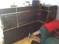 Enormous fish tank and fish for sale