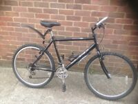 1990s Adults Raleigh Max Ogre Mountain Bike 15 Speed