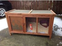 Large hutch , rabbit , Guinea pigs , ferret , possible free delivery