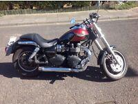 Triumph speedmaster year 2008