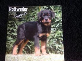 Rottweiler puppies calendar