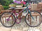 Ladies Bicycle MAGNA CREATION Magenta & Emerald GOOD CONDITION