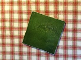 Green Fired Earth Tiles