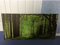 Forest canvas picture