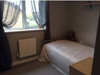 Quiet furnished single room to rent