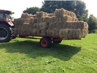 Meadow hay for sale