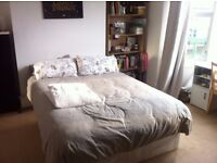 LOVELY DOUBLE ROOM IN CLAPHAM NORTH