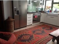 Beautiful large double in the friendly house to rent -NW10