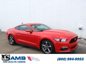 2016 Ford Mustang Fastback V6 EXECUTIVE DRIVEN UNIT NEW PROGRAMS
