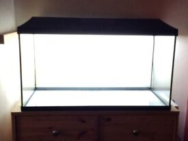 Glass aquarium & filters