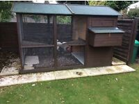 Cat house/chicken coop