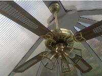 Conservatory remote fan and light