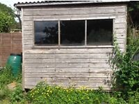 Shed/Chicken Pen wooden 8'x6'