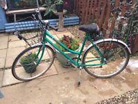 Triumph woman's bike