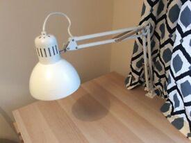 Adjustable work lamp (including energy-saving light bulb)