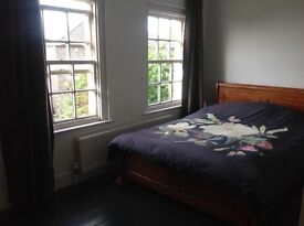 Beautiful large double room available for lodger