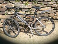 mountain bike claude butler ravana