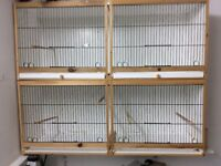 Double canary breeding cages