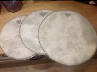 Remo Fiberskyn drum heads