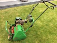 Atco commodore petrol cylinder mower