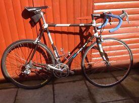 Classic carbon Fibre Look Road Bicycle