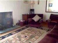 Attractive Art Deco style rug