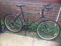 Retro Raleigh Mountain Bike 18 Speed ( made in England)