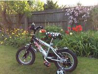 Raleigh Striker bike