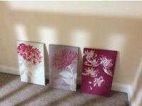 Set of 3 canvasses