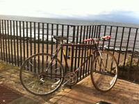 Kuwahara Classic Bike.