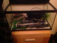 Vivarium fish tank and ornaments