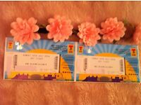 Two Sunday T in the park tickets for sale