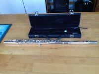 ts-iden 6120 flute