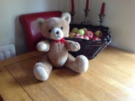 LI-LO teddy bear