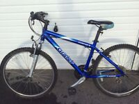 Men's Giant mountain bike