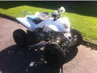 ROAD LEGAL QUAD BRANDNEW (NEARLY) SAT IN GARAGE ONLY DONE 100 MILE ON CLOCK £1750 NO OFFERS