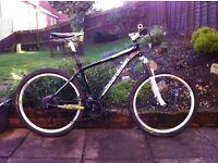 Mountain bike CBoardman Sport limited edition