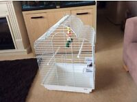 Parrot cage or cockatiel